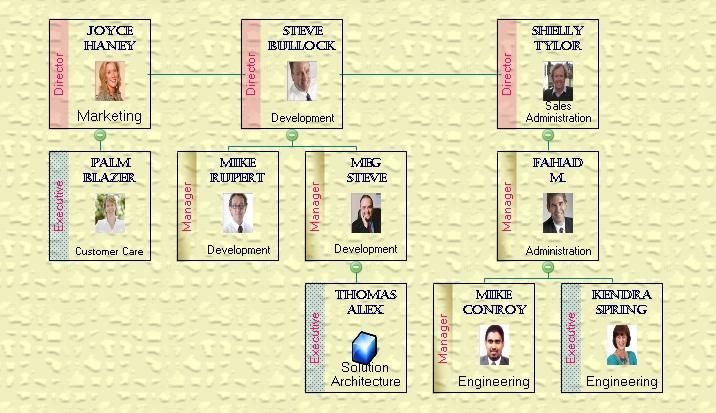samples of organizational charts